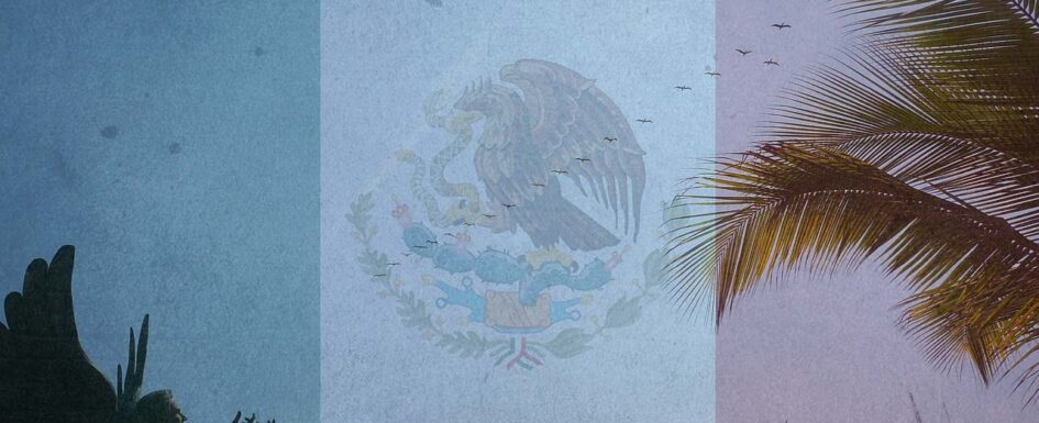 Do You Need to Worry about Drug Related Violence in Mexico?