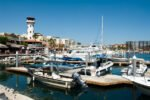 Head to the Marina in Cabo
